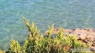 Salento mare, Puglia e spiaggia Maldive del Salento di Nescavacanze.it