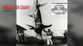 Top 5 Biggest Fish Ever Caught