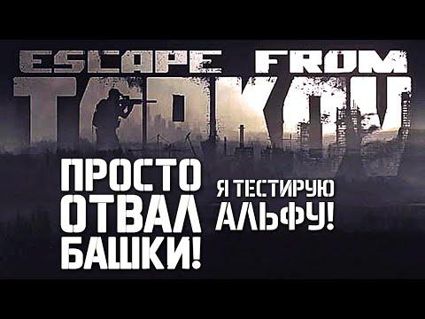 Комп Игры Для Котят - winspecification
