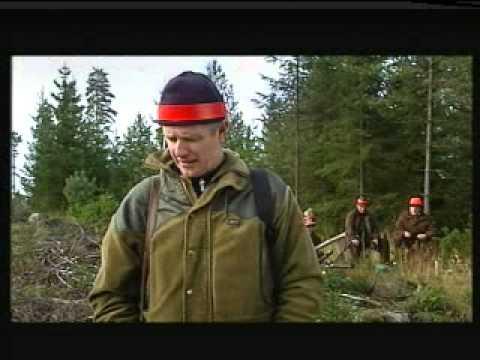 HEM TILL BYN SÄSONG 7 Avsnitt 45 - 2002