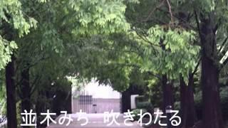 名古屋 宏 作詩 木下 忠司作曲 岡本敦郎 湯川きよ 歌 同名の映画主題歌...