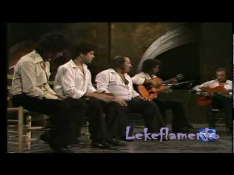 Jovenes Flamencos de Extremadura