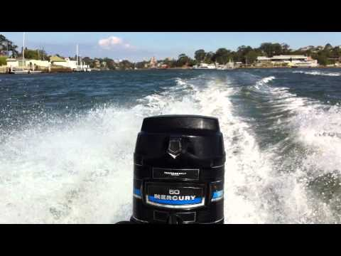 how to catch kingfish sydney harbour