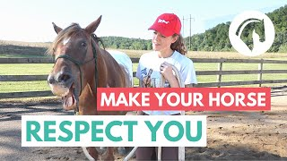 Horse Groundwork for RESPECT (Exercises That Work)