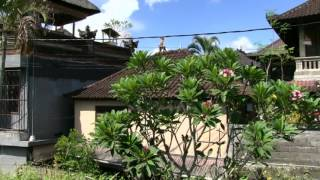 Bali Dive Safari Island Tracking Paul Ranky Copyright VideoClip30