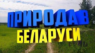 Природа в Беларуси! Ловля рыбы!