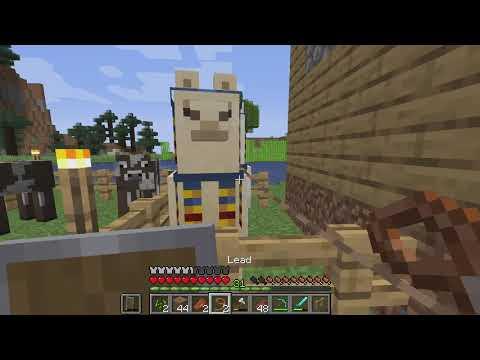 Stealing a traders LLamas!! (Bearing Minecraft EP4)