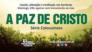 Colossenses - Senhorio de Cristo - A paz de Cristo | Culto 28/03/2021