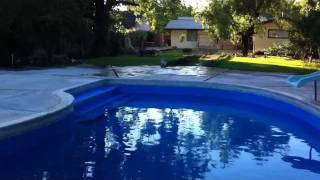 Royal Blue swimming pool paint