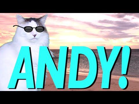 HAPPY BIRTHDAY ANDY!  EPIC CAT Happy Birthday Song