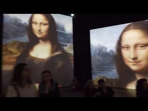leonardo-da-vinci---500-years-of-the-genius
