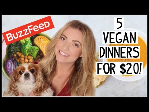 Buzzfeed Vegan Recipes TESTED! 5 VEGAN Dinners for $20!
