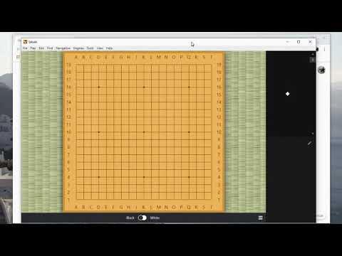 How to use Sabaki and Leela Zero