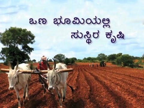 agriculture in kannada Get the latest agriculture news, including updates on farm policy, crops, livestock, machinery, and technology.