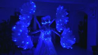 Неоновое Светодиодное Шоу на Свадьбе