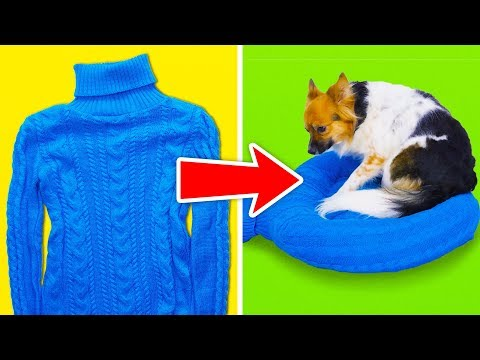 15-cool-crafts-for-your-pets