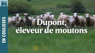 Dupont, éleveur de moutons