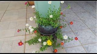 Plantando 11 Horas em Garrafas PET – Passo a Passo Completo