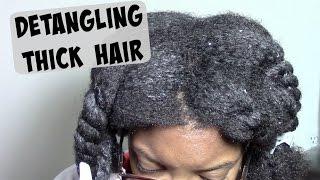 NO FAIL DETANGLE ROUTINE | THICK NATURAL HAIR