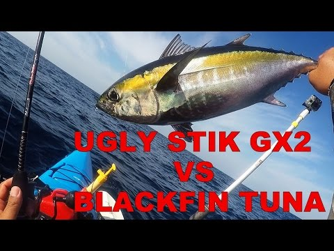Blue Water Offshore Vertical Jigging - Ugly Stik GX2 vs Blackfin Tuna