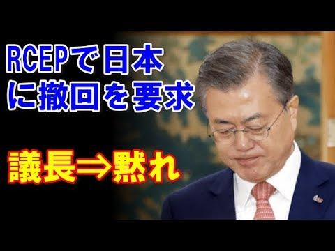RCEPの全体会合で日本に措置の撤回を求め議長に注意される