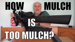 Mulching Leaf Blower Review- Black & Decker BV3100 | EpicReviewGuys CC