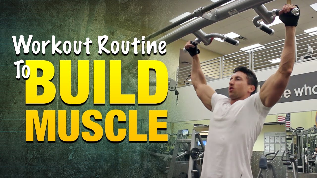 Workout Routine To Build Muscle Bigger Arms Legs And Back Muscles With This Plan