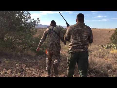 Hunting San Carlos Reservation