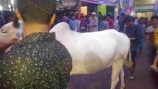 গাবতলী হাট | ক্রেতাদের কাছে শুনুন গরুর মূল্য| cow market Gabtoli 2018