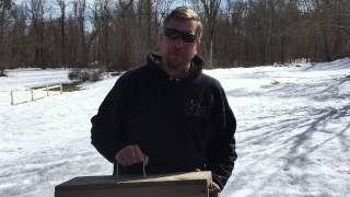 Late Winter Rabbit Removal in Armonk, NY: Interepid Wildlife Services