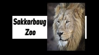 Sakkarbaug Zoological Garden    Junagadh Zoo Documentary Movie    Hindi