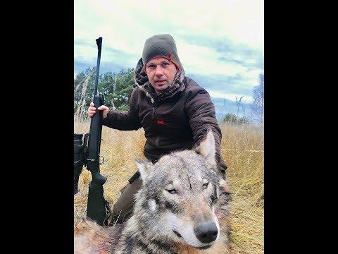 Охота на волка.Новогодний экспресс. Часть 5.