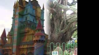 Mi viaje a Brasil y a Beto Carrero 2011