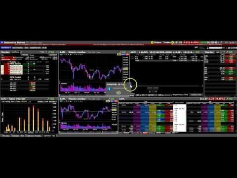 interactive-brokers.-the-tws-options-video.