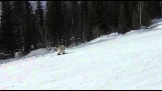 Олька 03 03