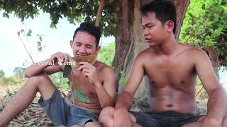 Primitive Technology with Survival Skills looking honeycomb for food
