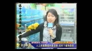 寵物鳥鸚鵡各種鸚鵡介紹