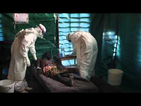 Ebola Virus Outbreak in 2014