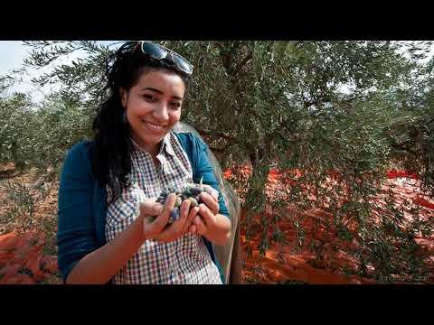 Aisha Sheikh Talks Unpredictability and Evolving Identities