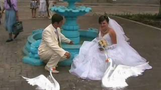 Видеосъёмка свадеб-образец 2
