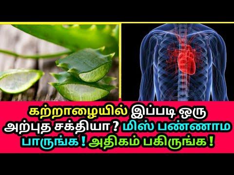 கற்றாழையில் இப்படி ஒரு அற்புத சக்தியா ? Aloe Vera - Health tips, Heart problem, Skin Whitening