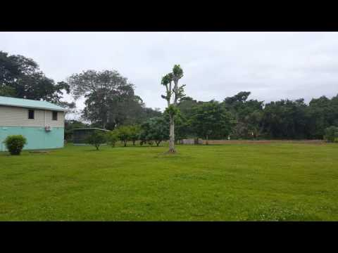 IDBZ121- Home on 350 Acres Along Belize River-Davis Bank