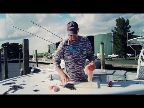 Cutting up storing preparing your fish w scott walker for Triple tail fish recipes