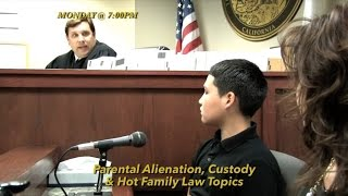 Parental Alienation, Grandparents' Rights & New Divorce Rules: Hot Topics in Family Law