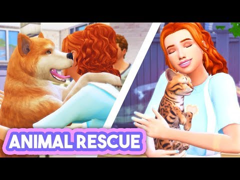 RESCUE STRAYS, CARE FOR THEM, GIVE THEM A FOREVER HOME💗 // ANIMAL RESCUE CAREER | MOD REVIEW - TS4