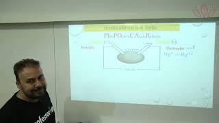 ELETROQUÍMICA: Circuito elétrico com limão