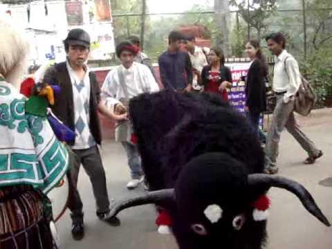 Tibet Festival Delhi University