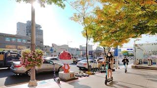 [4K] 서울 강남 청담동 명품거리와 한류스타 거리 걷…