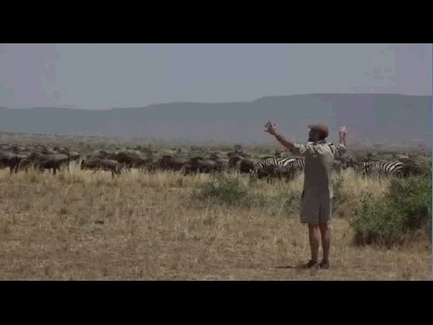 Safari Live Face Book : Day 2 with James and Graham in Massai Mara Kenya Aug 29, 2016