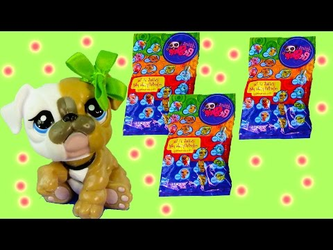 LPS Colorfully Cute Blind Bag Mystery Littlest Pet Shop Dog Beverly Unboxing